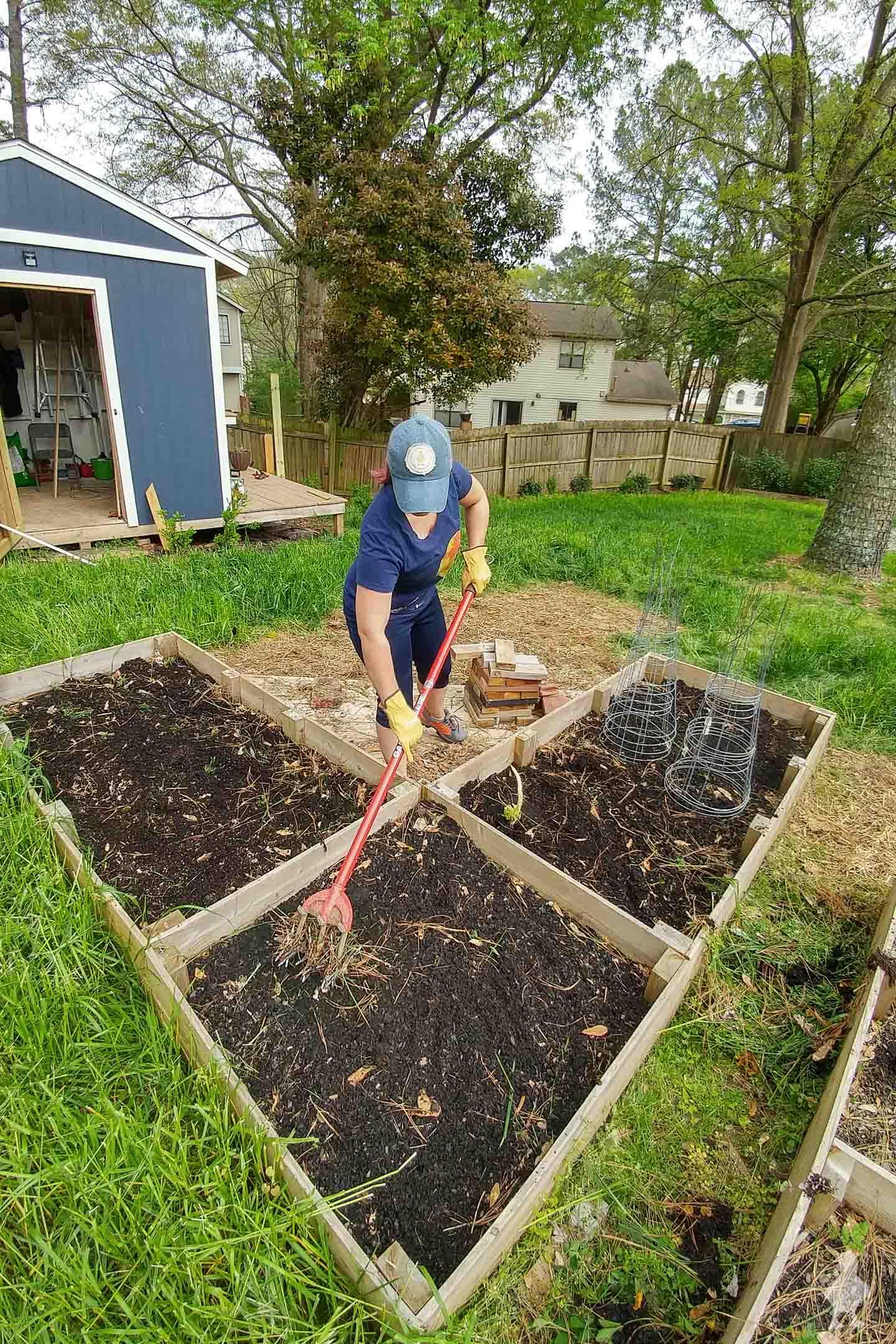 backyard vegetable garden beds year 2