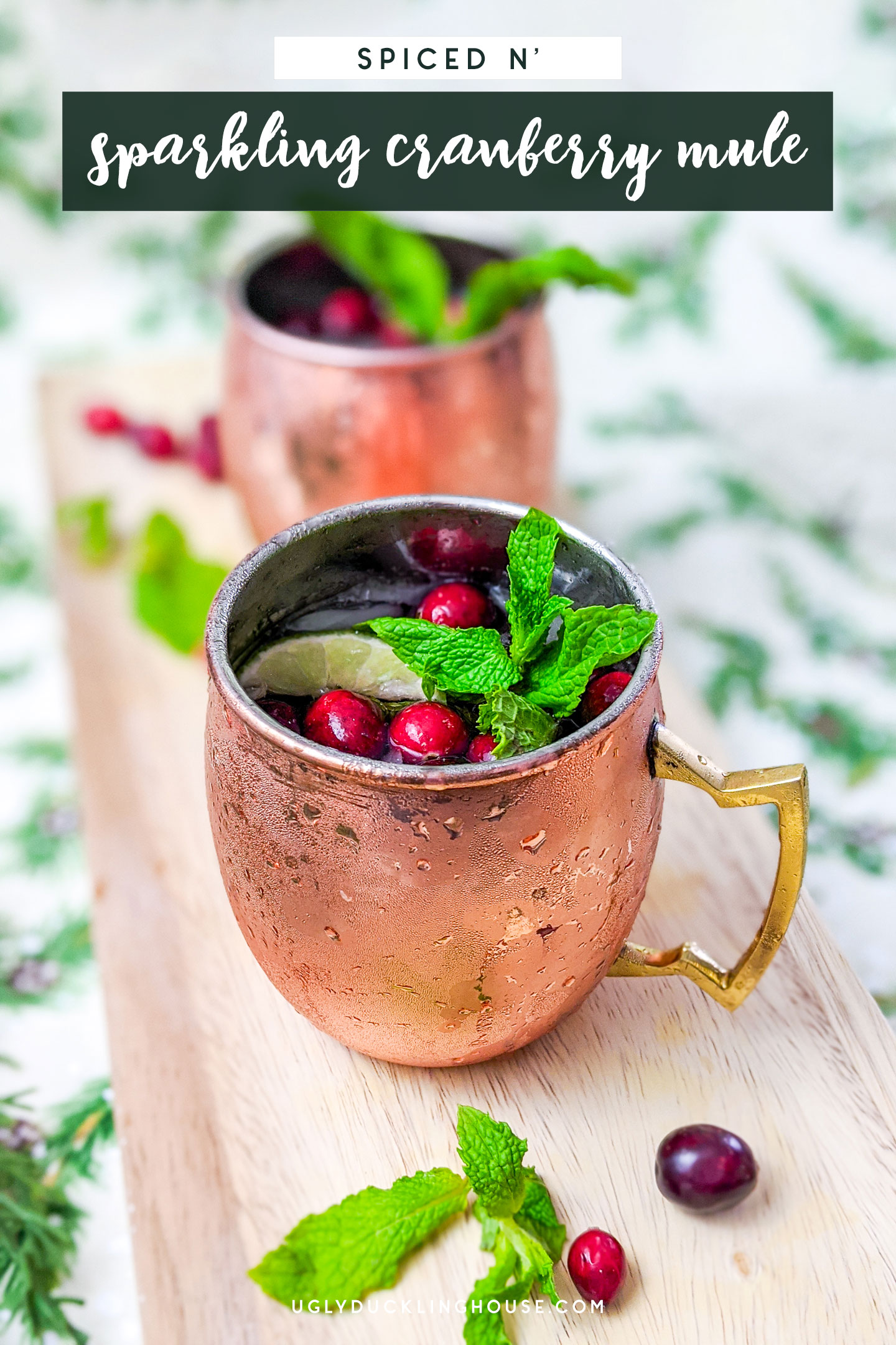 spiced and sparkling cranberry moscow mule