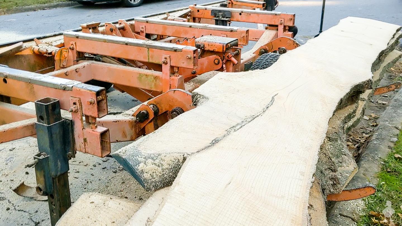 brushing sawdust off of each wood slice