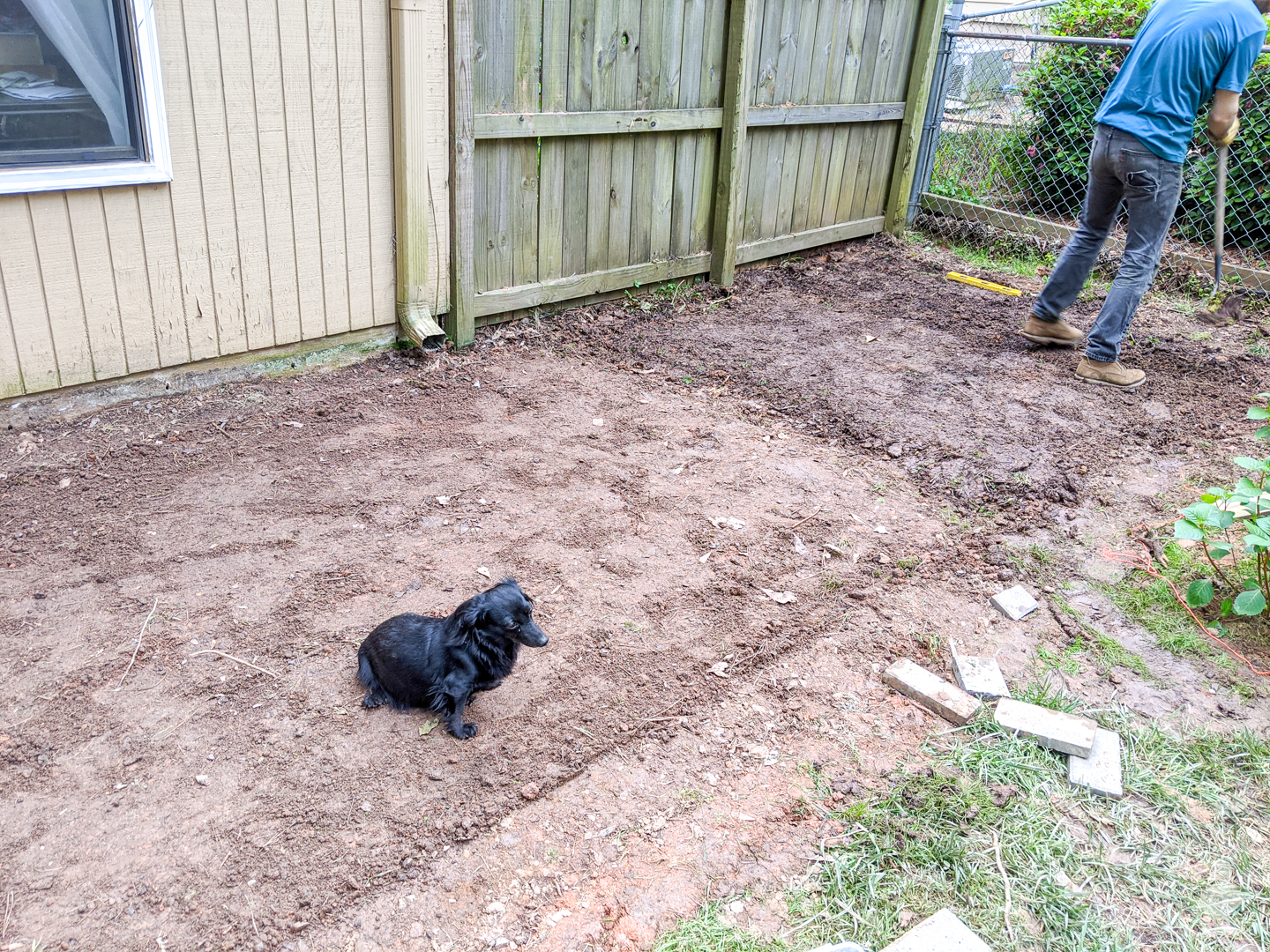 new landscaping project in the back yard
