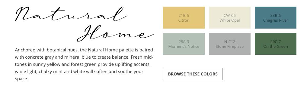 Clark+Kensington 2020 Color Trends - Natural Home blues greens grays yellow